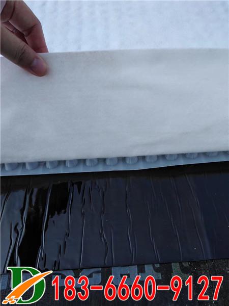SDS虹吸排水收集系统